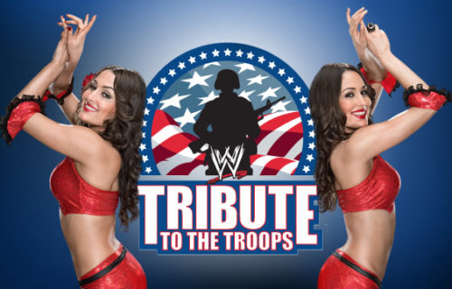 Howie Mandel Set To Appear At The WWE Tribute To The Troops Special