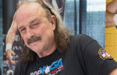 Jake Roberts on fans hating Roman Reigns, another possible WWE run, his documentary