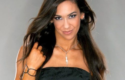 AJ Lee launches New Clothing Collection For Charity - Official Details Included