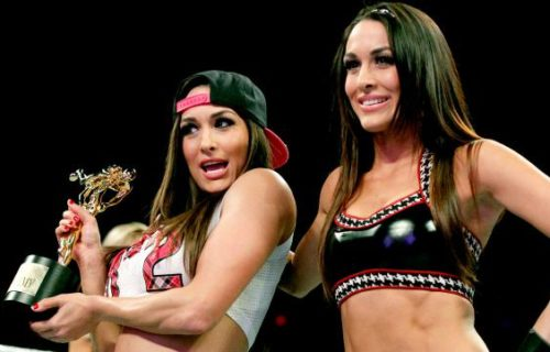 Post-PPV Update on The Bella Twins, WWE Dedicates Video Game, Rob Van Dam Films Movie