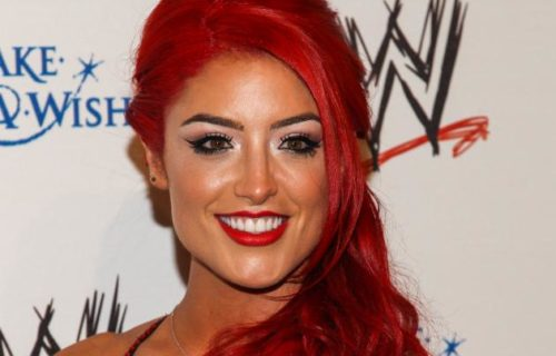 WWE Diva Says She's Recovering from Injury
