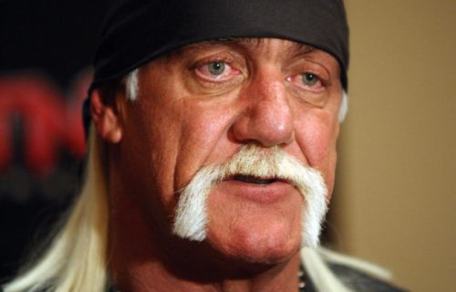 AEW Star 'Furious' At Hulk Hogan Defenders