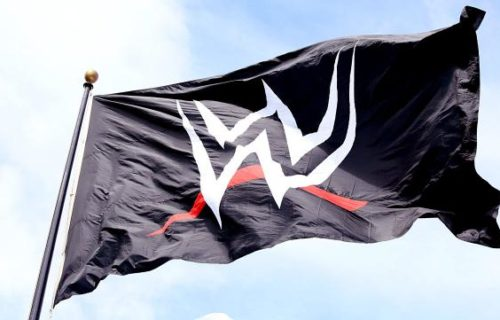WWE Issues Warning About Social Media To Prospects, WWE Attendance Figures