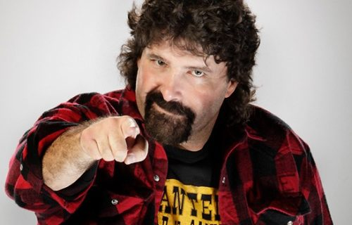Mick Foley Talks About CM Punk's Decision to Join UFC