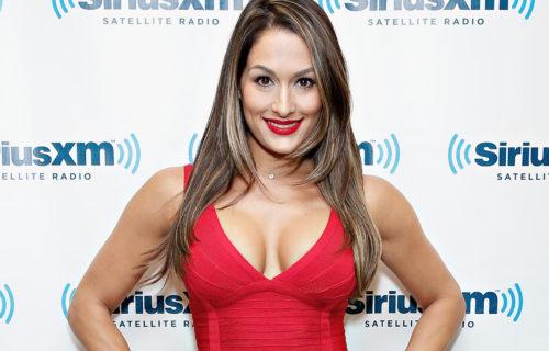 WWE Names Most Unexpected Breakout Stars of 2014, John Cena Congratulates Nikki Bella