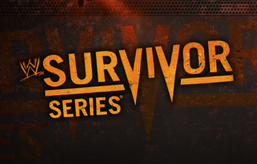 Survivor Series Attendance News, HHH and Stephanie Magazine Cover, Network Series on DVD