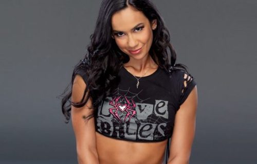 AJ Lee talks turning down storyline from WWE, being kept off TV for a few months