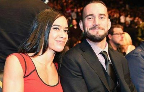 AJ Lee And CM Punk To Co-Star In An Upcoming Action-Horror Film