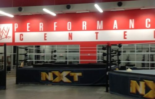 New report reveals the average salary of stars in WWE development