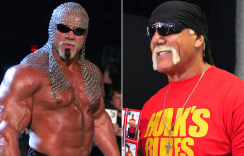 Former WCW Star Calls Hulk Hogan A Piece Of Sh*t For His Racist Comments