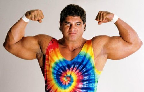 Don Muraco On Working With Jimmy Snuka And Hulk Hogan's Racist Comments