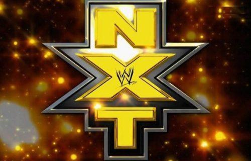 NXT Wrestler Injured At Friday's Live Event