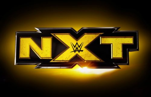 Top female talent possibly injured during NXT tapings yesterday