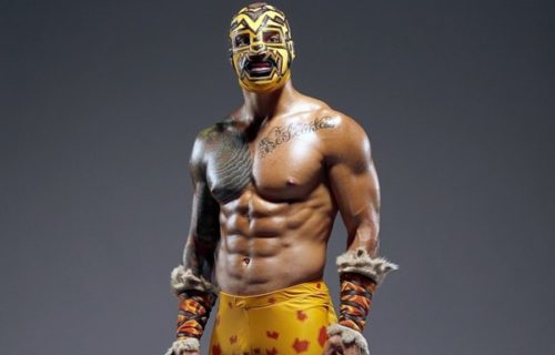 News on Prince Puma Possibly Signing with WWE