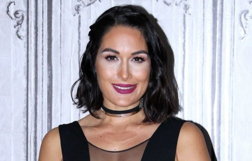 Brie Bella reveals time frame for her return