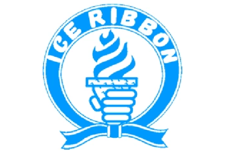 Japanese Ice Ribbon Pro Wrestling star involved in stabbing incident