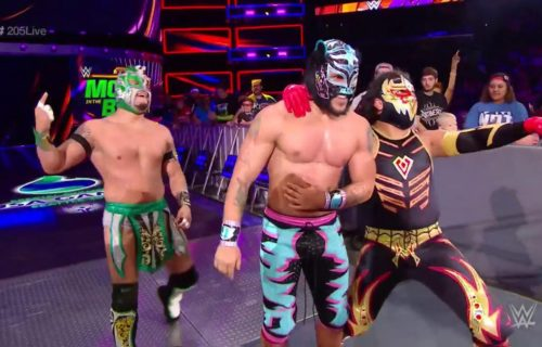Kalisto reveals wild ladder match pitch given by Vince McMahon