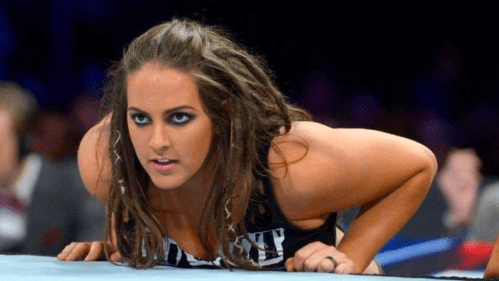 Sarah Logan comes out with a new gimmick during RAW commercial break