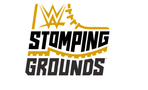 SmackDown Tag Team Title Match confirmed for Stomping Grounds