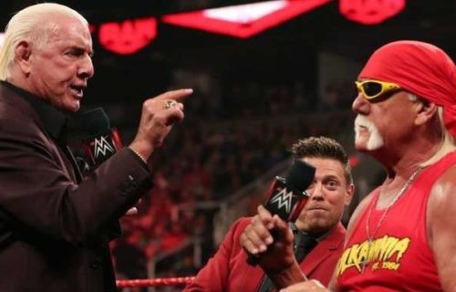 Team Hogan finds new Team Captain and adds two new team members for Crown Jewel