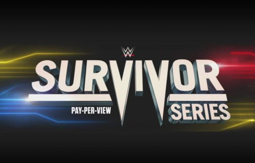 Final members of SmackDown Survivor Series team revealed