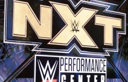 WWE NXT Superstars released