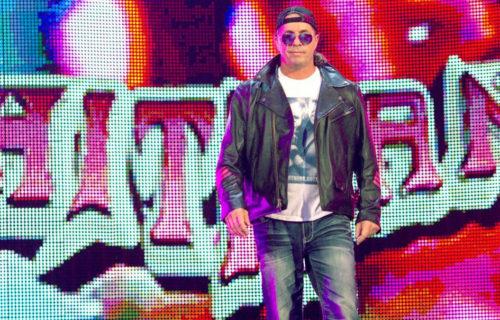 Bret Hart self critiques himself as a pro wrestler