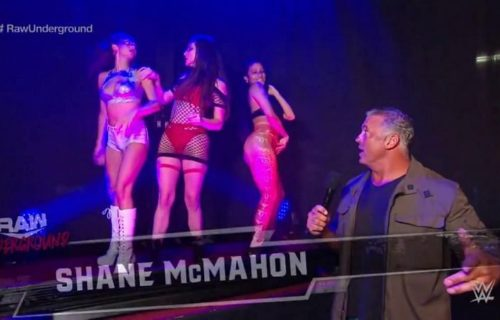 Real reason Shane McMahon introduced WWE Underground
