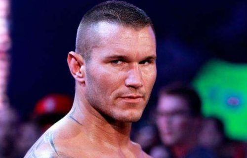 WWE Diva Reacts To Randy Orton Hitting Her