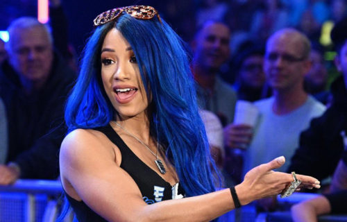 Sasha Banks talks about Evolution 2.0; reveals whom she wants to face