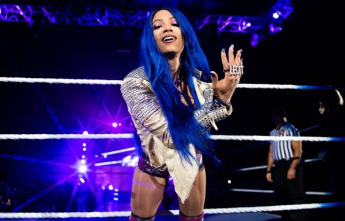 Sasha Banks does not want to be a Role Model - Here's why