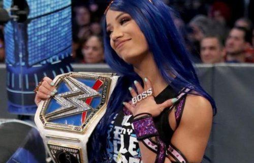 Sasha Banks Asks Ex-Diva To Return To WWE