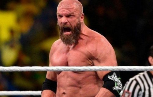 Triple H Wants To 'Bring Back' Fired WWE Star