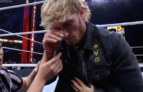 Logan Paul Makes 'Creepy' WWE Diva Remark