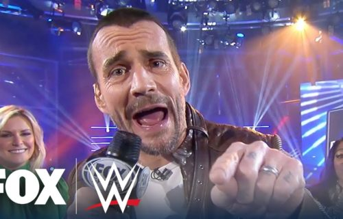 WWE Star 'Punished' For CM Punk Ripoff