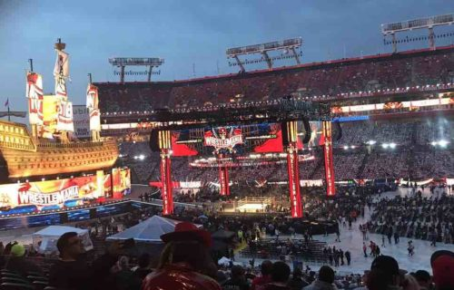 WWE Fan Gets 'Fever' At WrestleMania 37?
