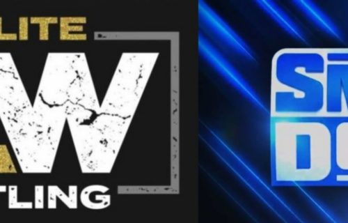 Former WWE Tag Team Tease Quitting AEW?