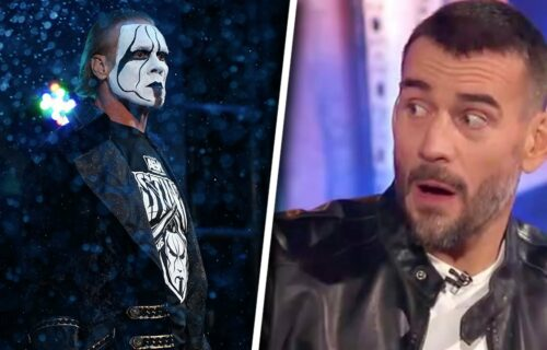 CM Punk & Sting AEW Bombshell Revealed