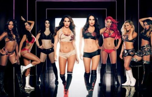 WWE Diva Accused Of 'Domestic Violence'
