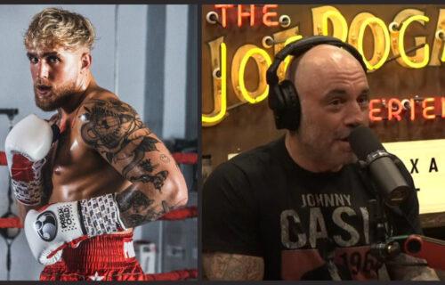 Jake Paul Drops Sad Joe Rogan Bombshell
