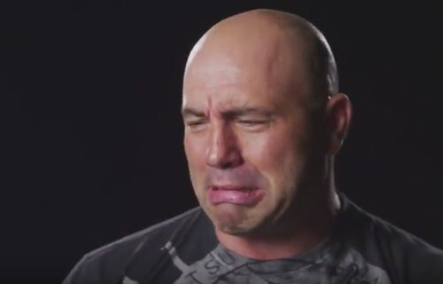 Joe Rogan Reveals A-List Star Got Hair Transplant